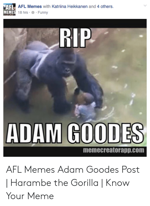 Gorilla Memes: AFL AFL Memes with Katriina Heikkanen and 4 others  MEMES 18 hrs Funny  RIP  ADAM GOODES  memecreatorapp.com AFL Memes Adam Goodes Post | Harambe the Gorilla | Know Your Meme