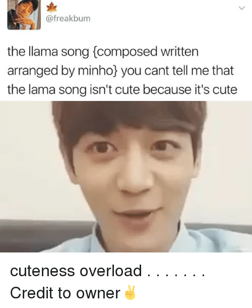 Memes, 🤖, and Song: (afreakbum  the llama song Composed written  arranged by minho you cant tell me that  the lama song isn't cute because it's cute cuteness overload . . . . . . . Credit to owner✌
