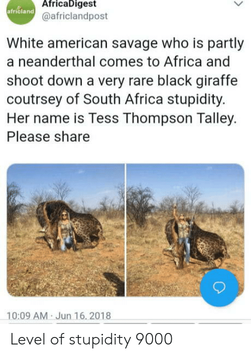 tess: AfricaDigest  africland  @africlandpost  White american savage who is partly  a neanderthal comes to Africa and  shoot down a very rare black giraffe  coutrsey of South Africa stupidity.  Her name is Tess Thompson Talley.  Please share  10:09 AM Jun 16, 2018 Level of stupidity 9000