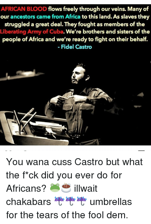 Fidel: AFRICAN BLOOD  flows freely through our veins. Many of  our ancestors came from Africa  to this land. As slaves they  struggled a great deal. Theyfought as members of the  Liberating Army of Cuba. We're brothers and sisters of the  people of Africa and we're ready to fight on their behalf.  Fidel Castro You wana cuss Castro but what the f*ck did you ever do for Africans? 🐸☕️ illwait chakabars ☔️☔️☔️ umbrellas for the tears of the fool dem.