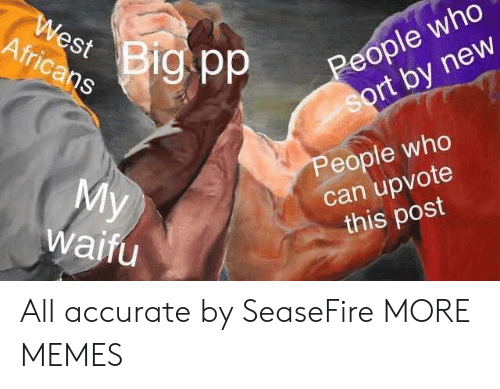 Waifu: Africans  St  People who  rt by new  People who  can upvote  this post  waifu All accurate by SeaseFire MORE MEMES