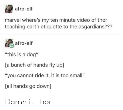 "ride it: afro-elf  marvel where's my ten minute video of thor  teaching earth etiquette to the asgardians???  afro-elf  ""this is a dog""  [a bunch of hands fly up  ""you cannot ride it, it is too small""  [all hands go down] Damn it Thor"
