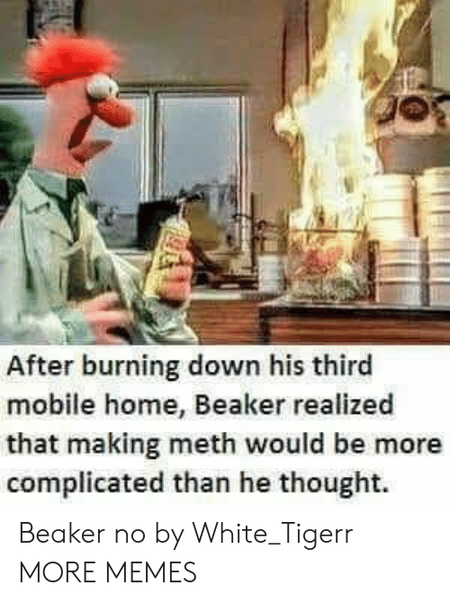 beaker: After burning down his thirc  mobile home, Beaker realized  that making meth would be more  complicated than he thought. Beaker no by White_Tigerr MORE MEMES