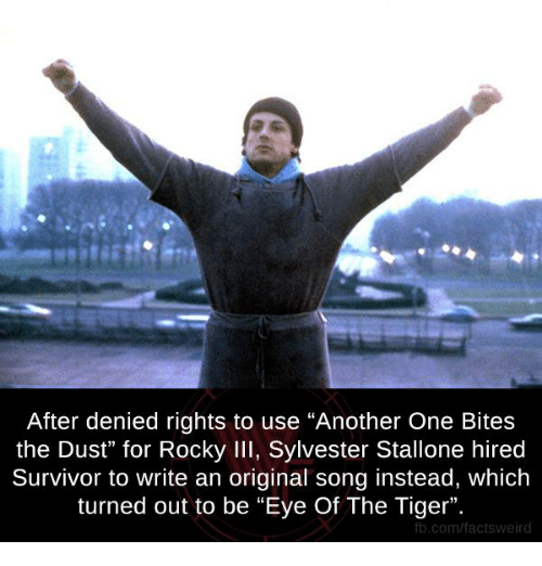 "Another One, Another One, and Memes: After denied rights to use ""Another One Bites  the Dust"" for Rocky Ill, Sylvester Stallone hired  Survivor to write an original song instead, which  turned out to be ""Eye Of The Tiger"".  fb.com/factsweird"