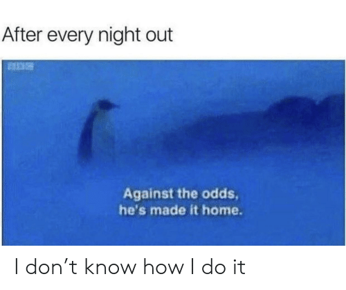 night out: After every night out  Against the odds  he's made it home. I don't know how I do it