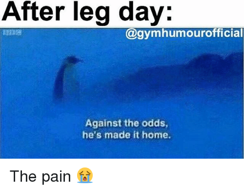 After Leg Day: After leg day:  @gymhumourofficial  Against the odds  he's made it home. The pain 😭