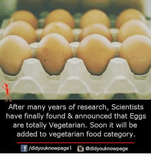 Food, Memes, and Soon...: After many years of research, Scientists  have finally found & announced that Eggs  are totally Vegetarian. Soon it will be  added to vegetarian food category  f/didyouknowpagel @didyouknowpage
