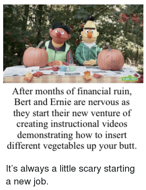 Starting A New Job: After months of financial ruin,  Bert and Ernie are nervous as  they start their new venture of  creating instructional videos  demonstrating how to insert  different vegetables up your butt.