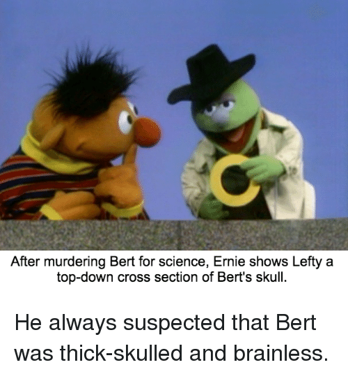 After Murdering Bert for Science Ernie Shows Lefty a Top ...