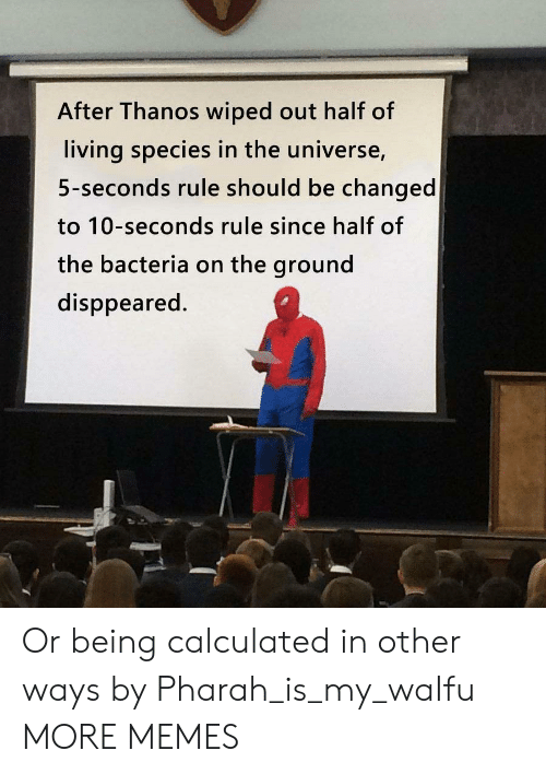 Waifu: After Thanos wiped out half of  living species in the universe,  5-seconds rule should be changed  to 10-seconds rule since half of  the bacteria on the ground  disppeared. Or being calculated in other ways by Pharah_is_my_waIfu MORE MEMES