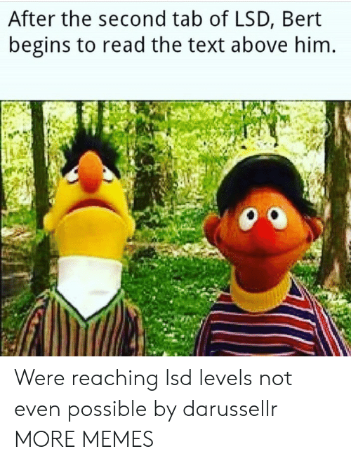 lsd: After the second tab of LSD, Bert  begins to read the text above him Were reaching lsd levels not even possible by darussellr MORE MEMES