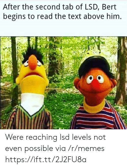 lsd: After the second tab of LSD, Bert  begins to read the text above him Were reaching lsd levels not even possible via /r/memes https://ift.tt/2J2FU8a