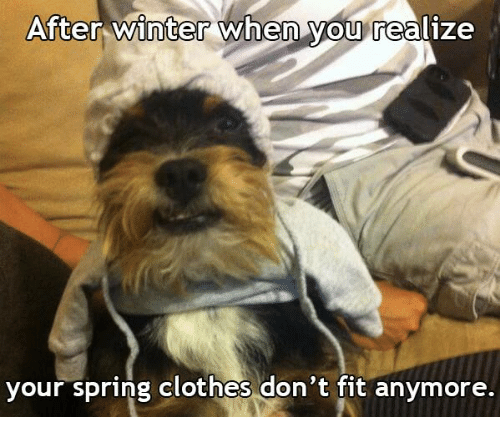 after winter when you realize your spring clothes dont fit 17474124 after winter when you realize your spring clothes don't fit