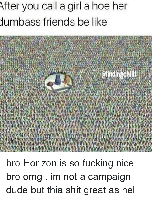 Memes, 🤖, and Her: After you call a girl a hoe her  dumbass friends be like bro Horizon is so fucking nice bro omg . im not a campaign dude but thia shit great as hell