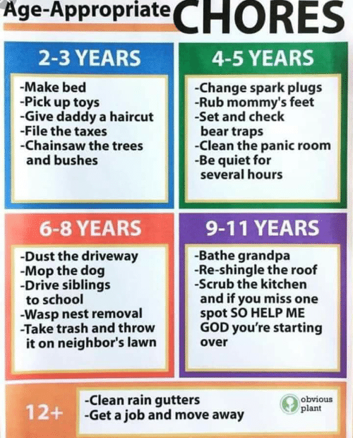 wasp nest: Age-Appropriate CHORES  2-3 YEARS  4-5 YEARS  -Make bed  -Pick up toys  -Give daddy a haircut  File the taxes  -Chainsaw the trees  and bushes  -Change spark plugs  -Rub mommy's feet  -Set and check  bear traps  -Clean the panic room  -Be quiet for  several hours  9-11 YEARS  6-8 YEARS  -Bathe grandpa  -Re-shingle the roof  -Scrub the kitchen  and if you miss one  spot SO HELP ME  GOD you're starting  -Dust the driveway  -Mop the dog  Drive siblings  to school  -Wasp nest removal  -Take trash and throw  it on neighbor's lawn  over  -Clean rain gutters  12+ -Get a job and move away  obvious  plant