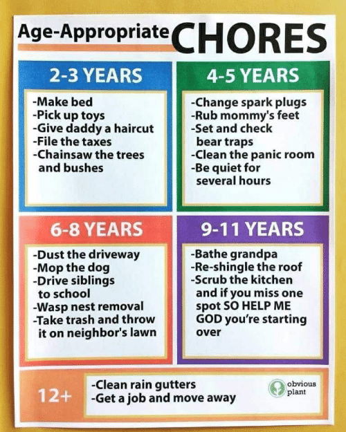 wasp nest: Age-AppropriateCHORES  2-3 YEARS  4-5 YEARS  -Make bed  -Pick up toys  -Give daddy a haircut  -File the taxes  -Chainsaw the trees  and bushes  -Change spark plugs  -Rub mommy's feet  -Set and check  bear traps  -Clean the panic room  -Be quiet for  several hours  6-8 YEARS  9-11 YEARS  -Bathe grandpa  -Re-shingle the roof  -Scrub the kitchen  and if you miss one  spot SO HELP ME  GOD you're starting  -Dust the driveway  -Mop the dog  -Drive siblings  to school  Wasp nest removal  -Take trash and throw  it on neighbor's lawn  over  -Clean rain gutters  12+ Get a job and move away  obvious  plant