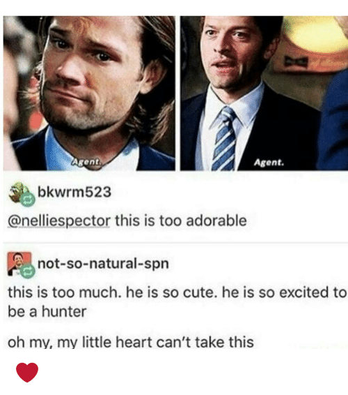 So Excite: Agent.  Agent  bkwrm523  anelliespector this is too adorable  not-so-natural-spn  this is too much. he is so cute. he is so excited to  be a hunter  oh my, my little heart can't take this ❤