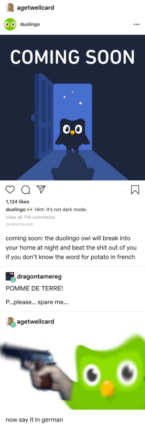coming soon: agetwellcard  .0 duolingo  COMING SOON  0.0  1,124 likes  duolingo Hint: it's not dark mode.  View all 119 comments  29 MINUTES AGO  coming soon: the duolingo owl will break into  your home at night and beat the shit out of you  if you don't know the word for potato in french  dragontamereg  POMME DE TERRE!  P...please... spare me...  agetwellcard  now say it in german
