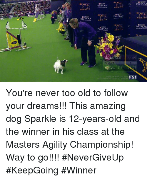 You Re Amazing Dog: Funny Masters Memes Of 2017 On SIZZLE