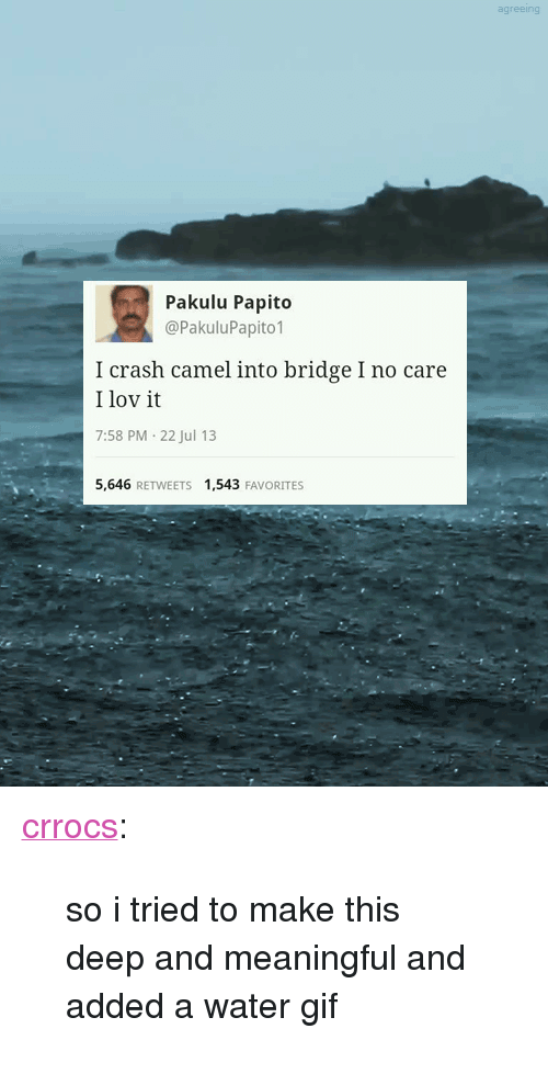 "Pakulu Papito: agreeing  Pakulu Papito  @PakuluPapito1  I crash camel into bridge I no care  I lov it  7:58 PM-22 Jul 13  5,646 RETWEETS 1,543 FAVORITES <p><a class=""tumblr_blog"" href=""http://crrocs.tumblr.com/post/56412557360/so-i-tried-to-make-this-deep-and-meaningful-and"" target=""_blank"">crrocs</a>:</p> <blockquote> <p>so i tried to make this deep and meaningful and added a water gif</p> </blockquote>"