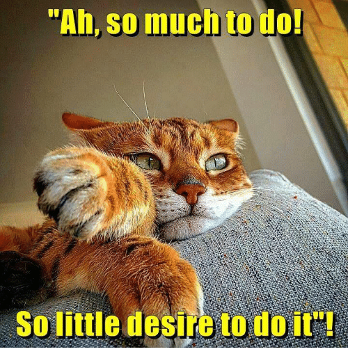 """So Much To Do So Little Desire To Do It: """"Ah, so much to do!  So little desire to do it"""