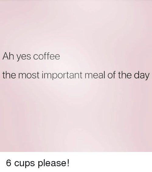 Coffee, Girl Memes, and Yes: Ah yes coffee  the most important meal of the day 6 cups please!