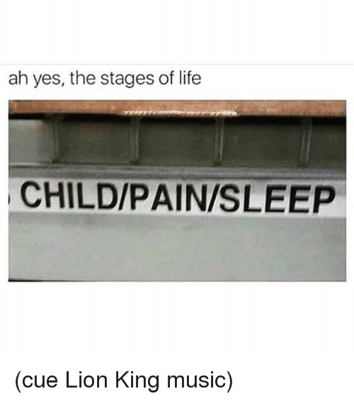 Life, Music, and Lion: ah yes, the stages of life  CHILD/PAIN/SLEEP (cue Lion King music)
