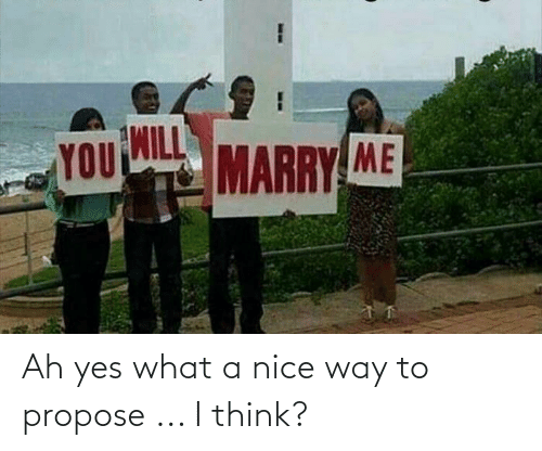 propose: Ah yes what a nice way to propose ... I think?