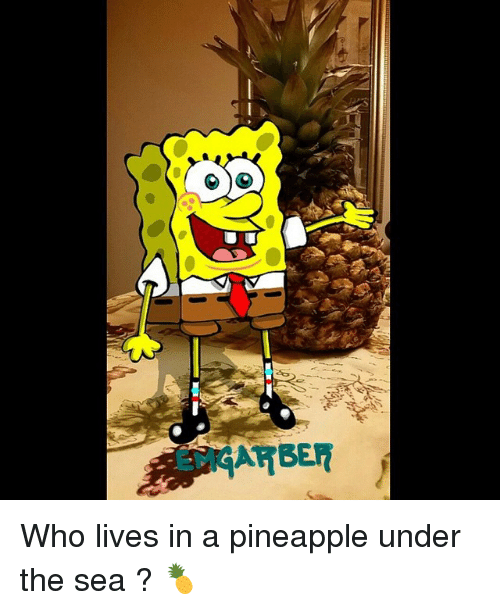 25+ Best Memes About Who Lives In A Pineapple Under The