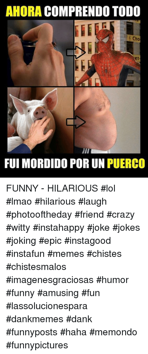 Puerco: AHORA COMPRENDO TODO  Cho  et  FUI MORDIDO POR UN PUERCO FUNNY - HILARIOUS  #lol #lmao #hilarious #laugh #photooftheday #friend #crazy #witty #instahappy #joke #jokes #joking #epic #instagood #instafun  #memes #chistes #chistesmalos #imagenesgraciosas #humor #funny  #amusing #fun #lassolucionespara #dankmemes  #dank  #funnyposts #haha #memondo #funnypictures