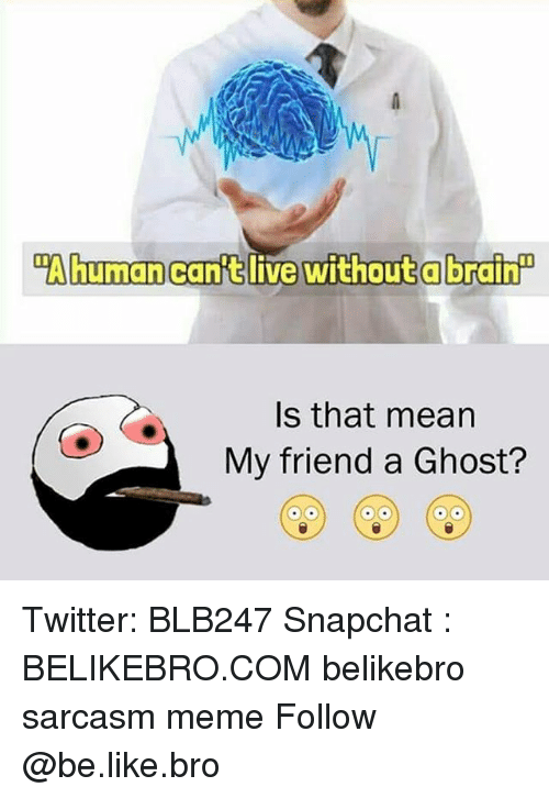 """Be Like, Meme, and Memes: """"Ahumancanft live without a brain  Is that mean  My friend a Ghost? Twitter: BLB247 Snapchat : BELIKEBRO.COM belikebro sarcasm meme Follow @be.like.bro"""
