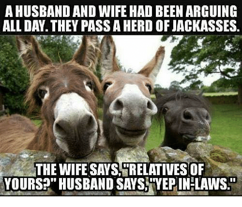 "Memes, Husband, and Wife: AHUSBAND AND WIFE HAD BEEN ARGUING  ALL DAY. THEY PASSA HERD OF JACKASSES.  THE WIFE SAYS RELATIVESOF  YOURS?"" HUSBAND SAYS YEPIN-LAWS"