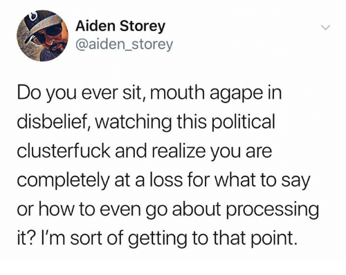 How To, How, and You: Aiden Storey  @aiden_storey  Do you ever sit, mouth agape in  disbelief, watching this political  clusterfuck and realize you are  completely at a loss for what to say  or how to even go about processing  it? l'm sort of getting to that point.
