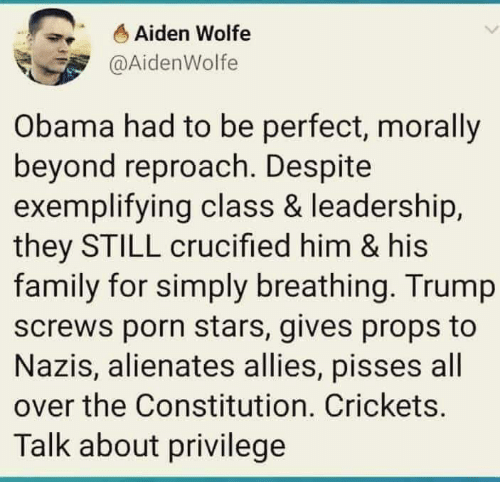 crickets: Aiden Wolfe  @AidenWolfe  Obama had to be perfect, morally  beyond reproach. Despite  exemplifying class & leadership,  they STILL crucified him & his  family for simply breathing. Trump  screws porn stars, gives props to  Nazis, alienates allies, pisses all  over the Constitution. Crickets.  Talk about privilege