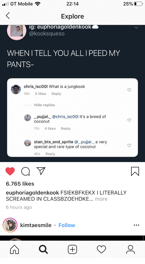 sprite: ail GT Mobile  25%O  22:14  Explore  ig: euphoriagoldenkook  @kooksqueso  WHENI TELL YOU ALL I PEED MY  PANTS-  chris_isc00l What is a jungkook  5 likes  16h  Reply  Hide replies  pujjal._@chris_isc00l it's a breed of  COconut  4 likes  11h  Reply  stan_bts_and_sprite @pujjal._ a very  special and rare type of coconut  40s  Reply  6.765 likes  euphoriagoldenkook FSIEKBFKEKX I LITERALLY  SCREAMED IN CLASSBZOEHDKE... more  6 hours ago  kimtaesmile - Follow  (+)  ос  (+)