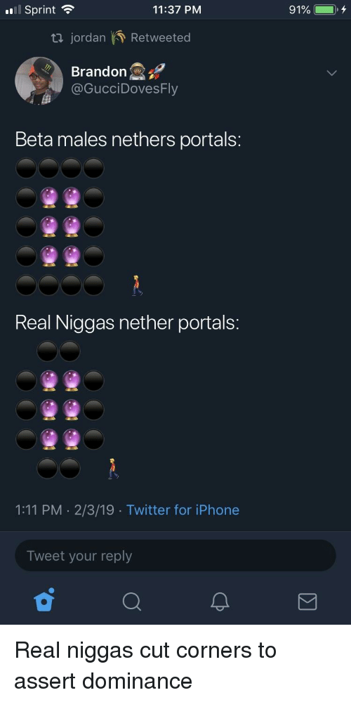 Nethers: .ail Sprint  11:37 PM  91%  t jordan Retweeted  Brandon  @GucciDovesFly  Beta males nethers portals:  Real Niggas nether portals:  1:11 PM 2/3/19 Twitter for iPhone  Tweet your reply
