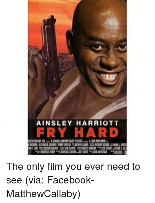 Memes, 🤖, and Via: AINSLEY HARRIOTT  FRY HARD The only film you ever need to see (via: Facebook- MatthewCallaby)