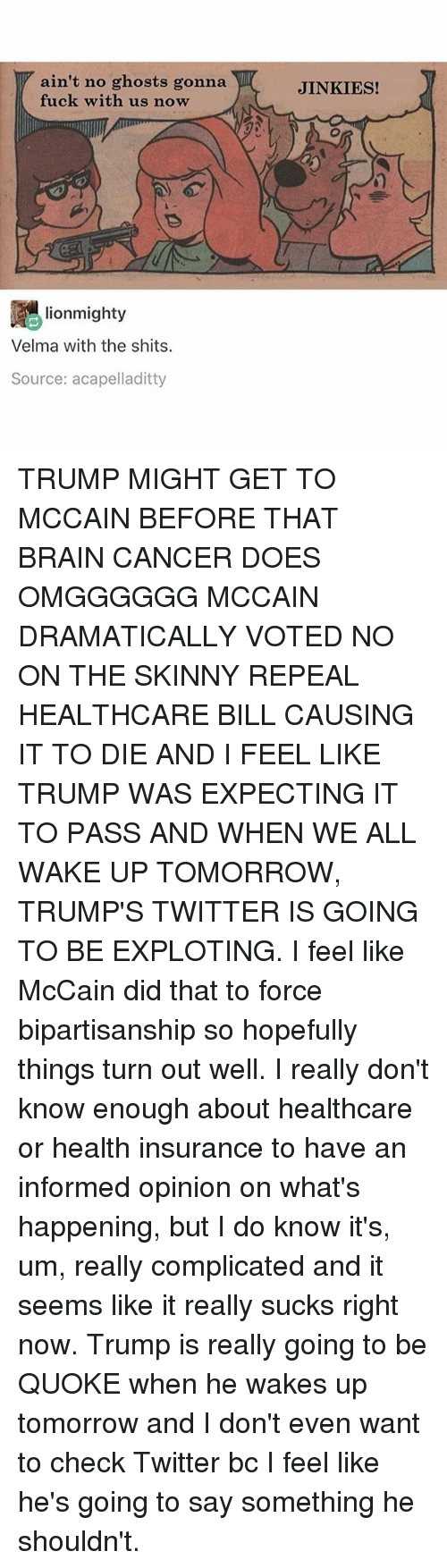 Ironic, Skinny, and Twitter: ain't no ghosts gonna  fuck with us now  JINKIES!  lionmighty  Velma with the shits.  Source: acapelladitty TRUMP MIGHT GET TO MCCAIN BEFORE THAT BRAIN CANCER DOES OMGGGGGG MCCAIN DRAMATICALLY VOTED NO ON THE SKINNY REPEAL HEALTHCARE BILL CAUSING IT TO DIE AND I FEEL LIKE TRUMP WAS EXPECTING IT TO PASS AND WHEN WE ALL WAKE UP TOMORROW, TRUMP'S TWITTER IS GOING TO BE EXPLOTING. I feel like McCain did that to force bipartisanship so hopefully things turn out well. I really don't know enough about healthcare or health insurance to have an informed opinion on what's happening, but I do know it's, um, really complicated and it seems like it really sucks right now. Trump is really going to be QUOKE when he wakes up tomorrow and I don't even want to check Twitter bc I feel like he's going to say something he shouldn't.