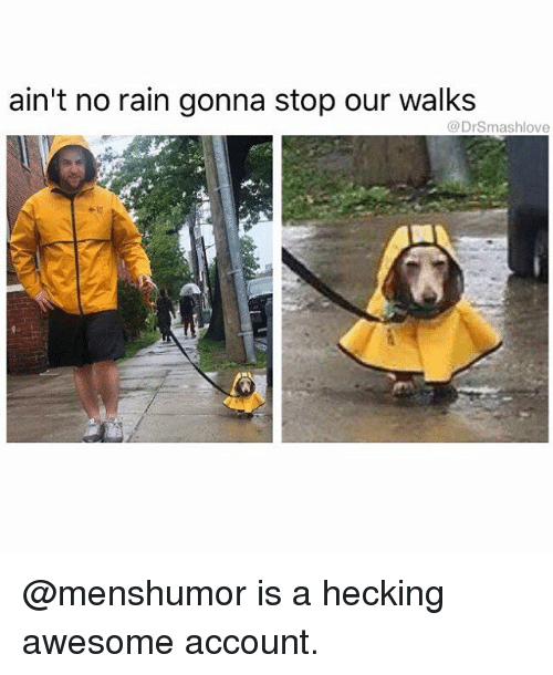 no rain: ain't no rain gonna stop our walks  @Dr Smashlove @menshumor is a hecking awesome account.