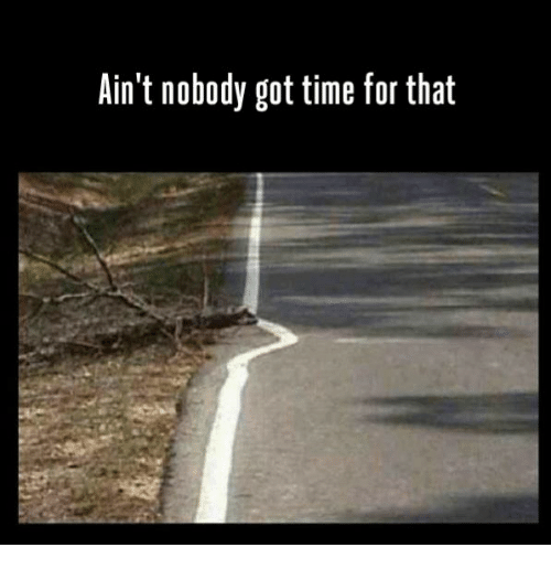 Ain't Nobody Got Time for That, Time, and Got: Ain't nobody got time for that