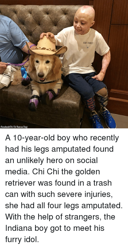 Facebook, Memes, and Social Media: AIR FORCE  (Facebook/Chi Chi Rescue Dog] A 10-year-old boy who recently had his legs amputated found an unlikely hero on social media. Chi Chi the golden retriever was found in a trash can with such severe injuries, she had all four legs amputated. With the help of strangers, the Indiana boy got to meet his furry idol.