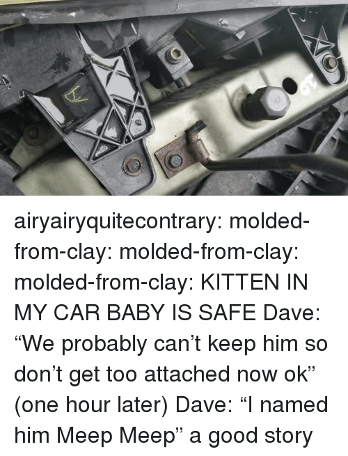 """meep: airyairyquitecontrary: molded-from-clay:  molded-from-clay:  molded-from-clay: KITTEN IN MY CAR BABY IS SAFE    Dave: """"We probably can't keep him so don't get too attached now ok"""" (one hour later) Dave: """"I named him Meep Meep""""  a good story"""