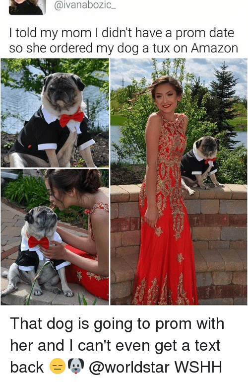 Amazon, Memes, and Worldstar: aivanabozic  I told my mom I didn't have a prom date  so she ordered my dog a tux on Amazon That dog is going to prom with her and I can't even get a text back 😑🐶 @worldstar WSHH