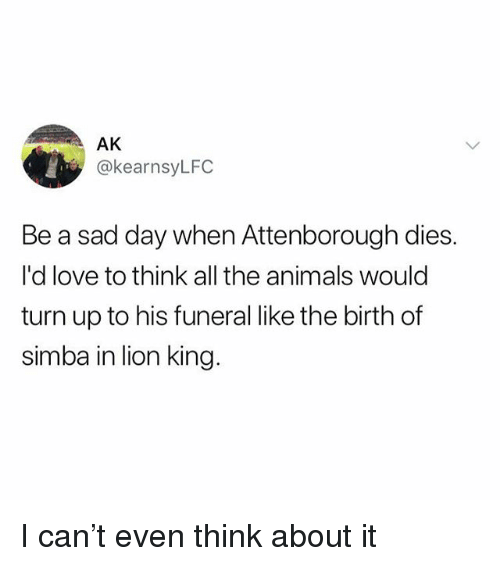Animals, Love, and Turn Up: AK  @kearnsyLFC  Be a sad day when Attenborough dies.  I'd love to think all the animals would  turn up to his funeral like the birth of  simba in lion king I can't even think about it