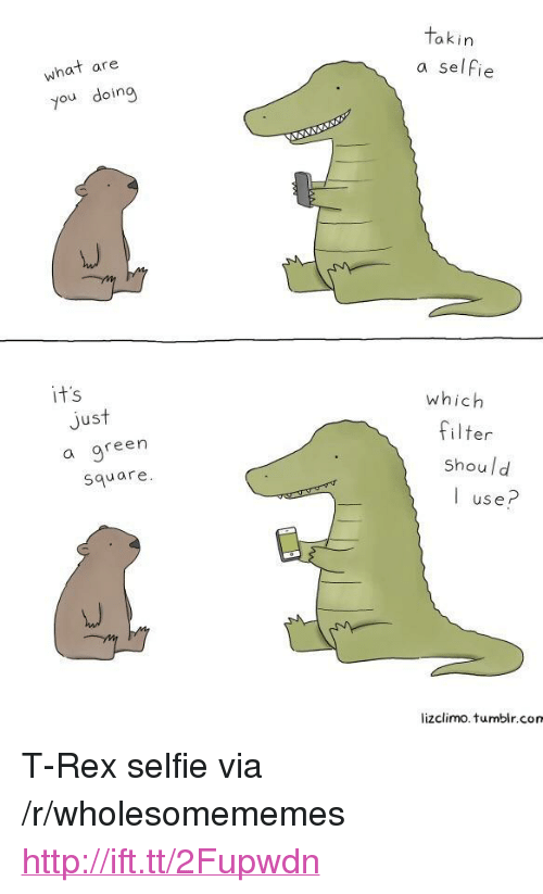 "Selfie, Tumblr, and Http: akin  what are  you doing  a selfie  it's  which  Jus  a gree  square  filter  shoul d  I use?  lizclimo. tumblr.com <p>T-Rex selfie via /r/wholesomememes <a href=""http://ift.tt/2Fupwdn"">http://ift.tt/2Fupwdn</a></p>"