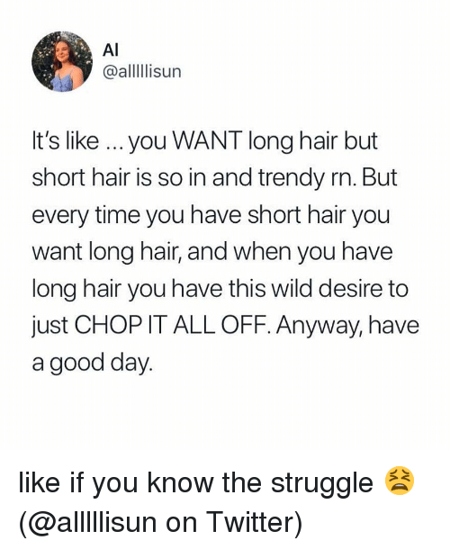But Every Time: Al  @alllIlisun  It's like ...you WANT long hair but  short hair is so in and trendy rn. But  every time you have short hair you  want long hair, and when you have  long hair you have this wild desire to  just CHOP IT ALL OFF. Anyway, have  a good day like if you know the struggle 😫 (@alllllisun on Twitter)