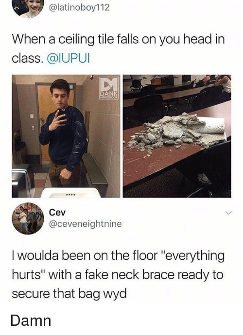 "Fake, Head, and Memes: alatinoboy112  When a ceiling tile falls on you head in  class. @IUPUI  DA  Cev  @ceveneightnine  I woulda been on the floor ""everything  hurts"" with a fake neck brace ready to  secure that bag wyd Damn"