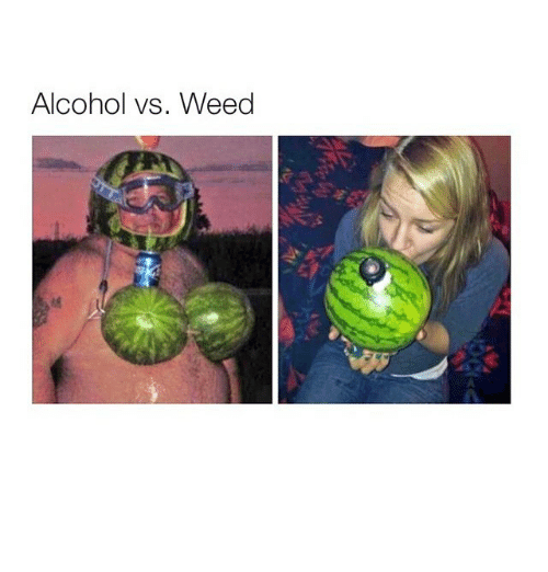 marijuana v alcohol This has clearly become an emotional debate when what it should be is a scientific debate we're all entitled to our opinions on marijuana (and alcohol)but they should be based on facts.