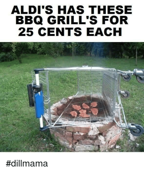Memes, Aldi, and 25 Cent: ALDI'S HAS THESE  BBQ GRILL'S FOR  25 CENTS EACH #dillmama