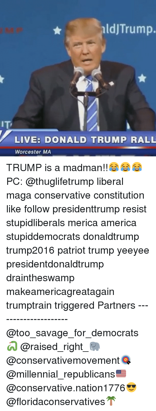 America, Donald Trump, and Memes: aldjTrump.  IT  LIVE: DONALD TRUMP RALL  Worcester MA TRUMP is a madman!!😂😂😂 PC: @thuglifetrump liberal maga conservative constitution like follow presidenttrump resist stupidliberals merica america stupiddemocrats donaldtrump trump2016 patriot trump yeeyee presidentdonaldtrump draintheswamp makeamericagreatagain trumptrain triggered Partners --------------------- @too_savage_for_democrats🐍 @raised_right_🐘 @conservativemovement🎯 @millennial_republicans🇺🇸 @conservative.nation1776😎 @floridaconservatives🌴